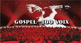 Sortie nationale du DVD de Gospel pour 100 voix