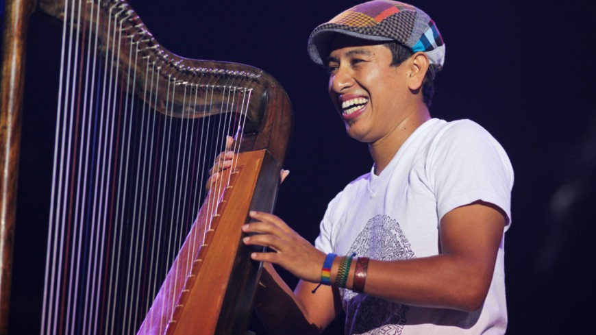 La harpe dans le jazz, un sublime instrument…