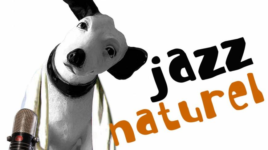 Jazz Naturel à Orthez : Marcus Miller confirme sa présence